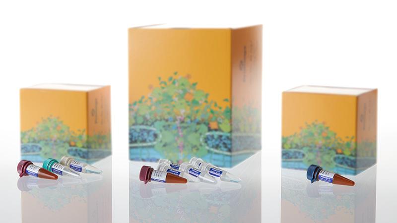 xét nghiệm ADN, xét nghiệm ADN huyết thống, huyết thống cha con, xét nghiệm di truyền