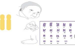 10 con số thú vị về ADN