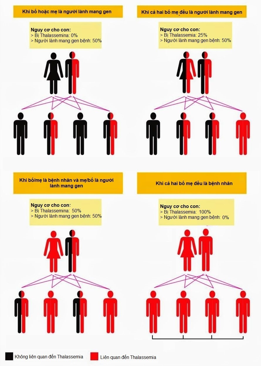 tan máu bẩm sinh, thalassemia, bệnh thalassmia di truyền